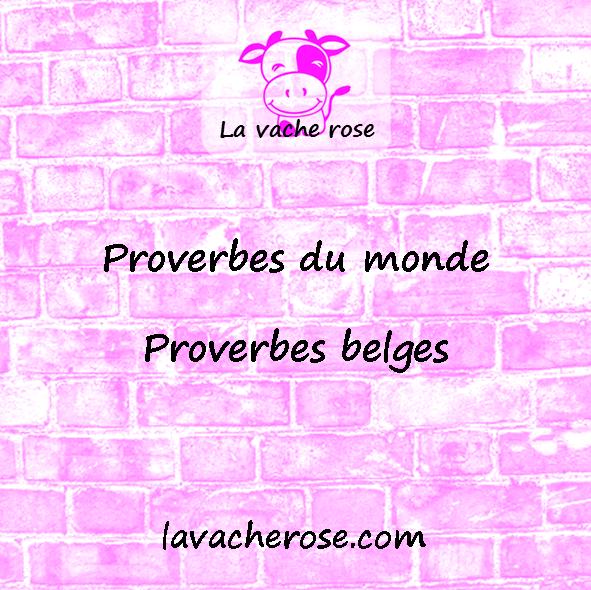 4 des plus beaux et plus populaires proverbes belges