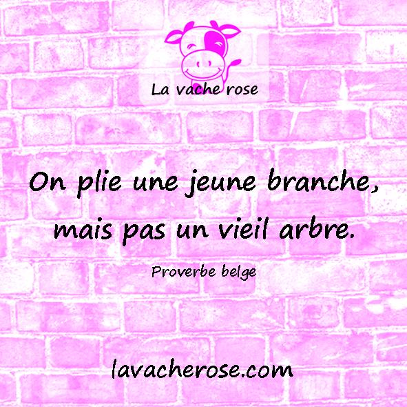 Proverbes belges