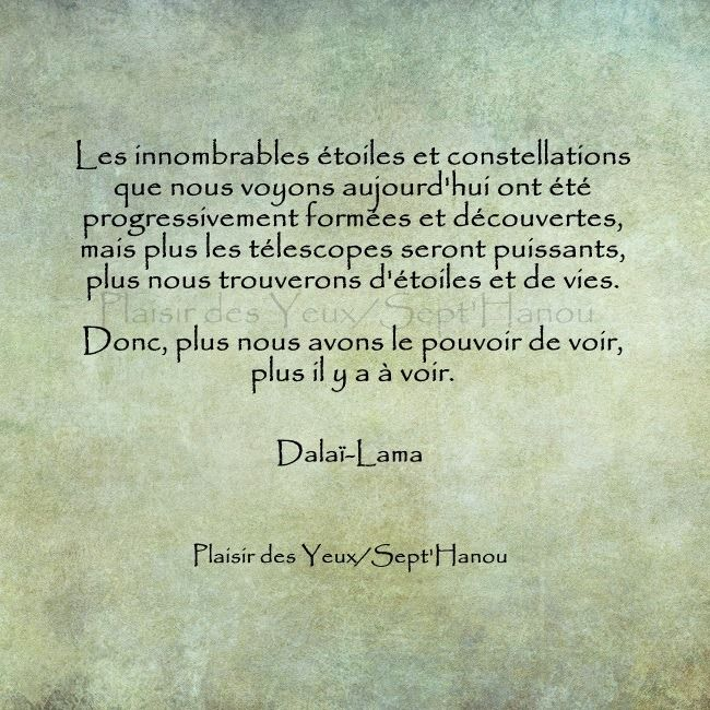 Citaten Dalai Lama : Dalaï lama citations la vache rose