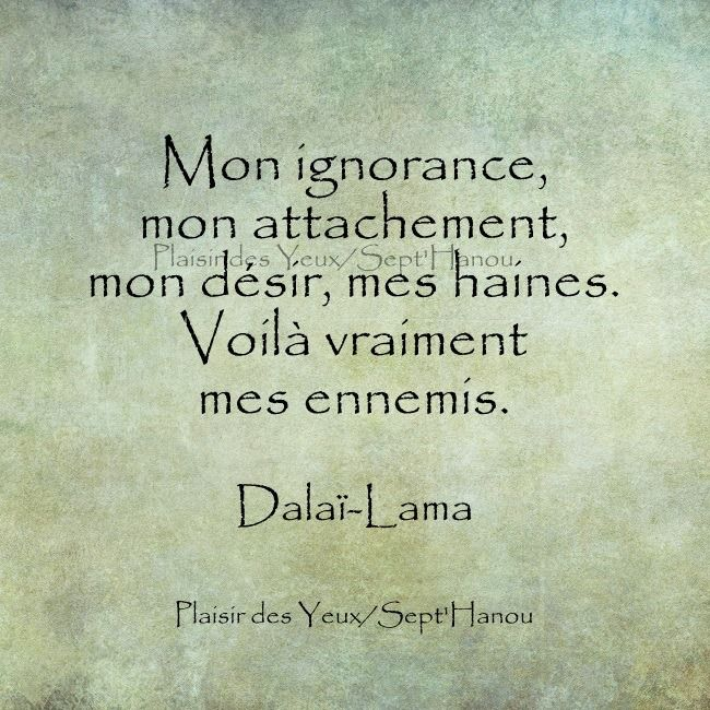 Dalaï Lama 52 Citations La Vache Rose