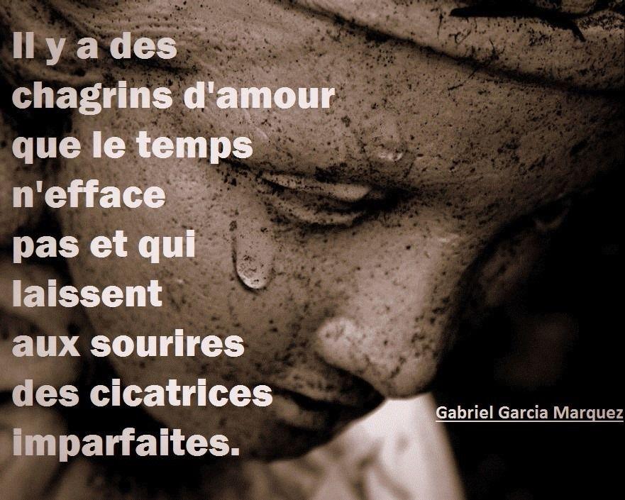 Gabriel Garcia Marquez - 5 Citations