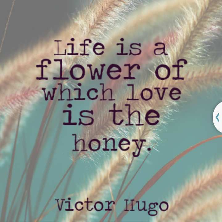Victor Hugo - English - 4 Quotes