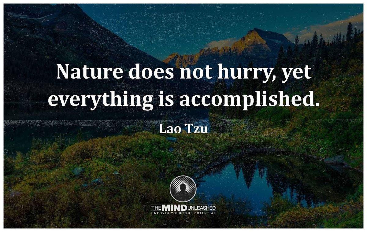 Lao Tzu - English - 16 Quotes