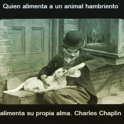 Charlie Chaplin - Castellano - 9 frases