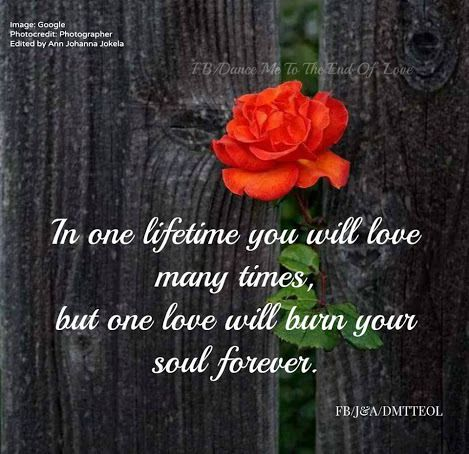 The most beautiful quotes of love - Serie 2