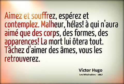 Victor Hugo 70 Citations Et 4 Poèmes La Vache Rose