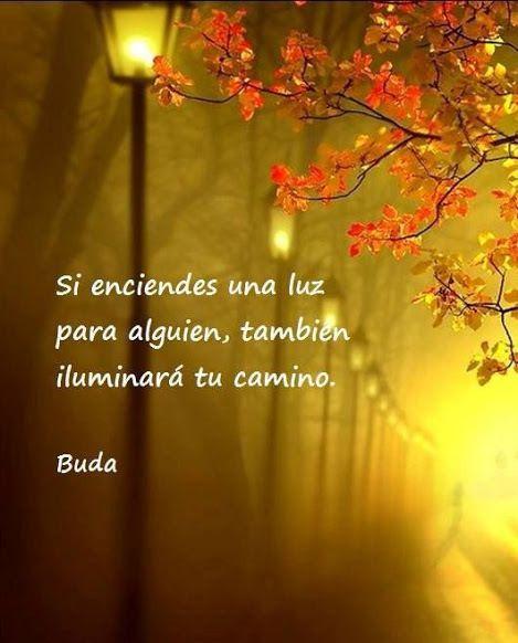 Buda - Castellano - 34 Frases