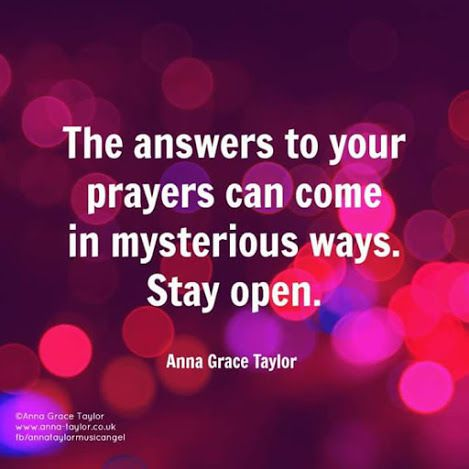 Anna Taylor - English - 3 Quotes