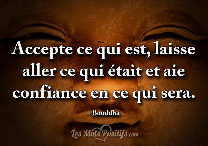 Connu Bouddha - 38 citations - La vache rose HG63