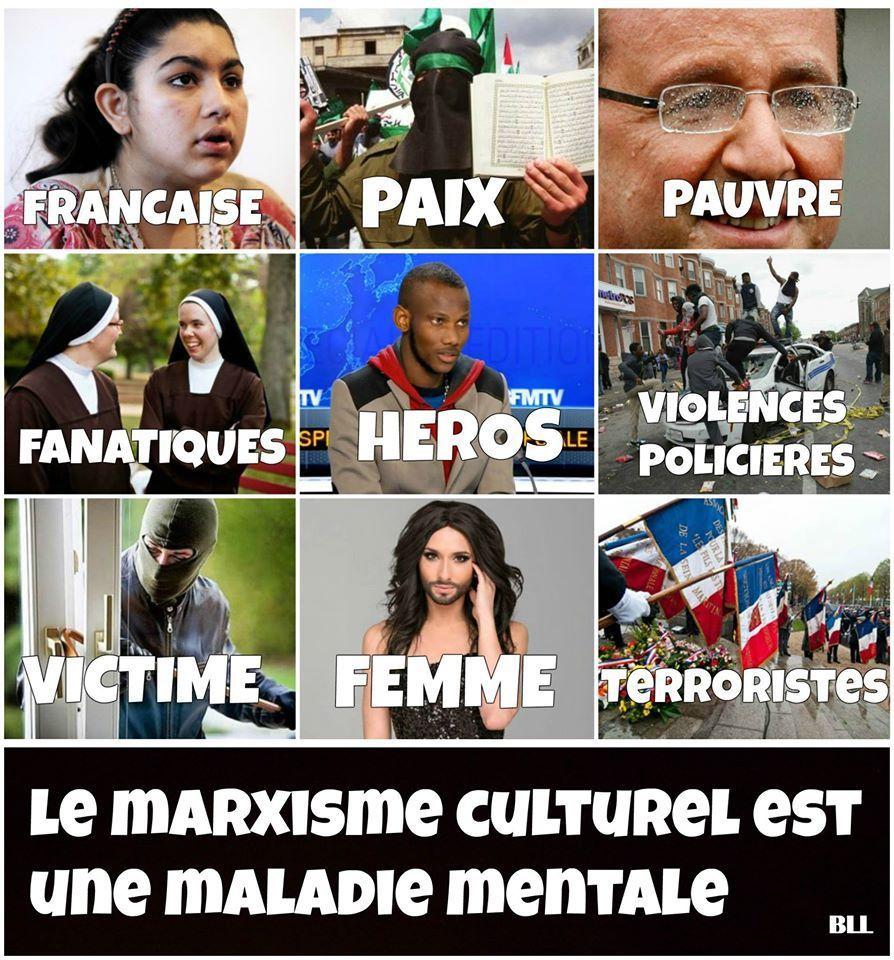 L'École de Francfort (Marxisme culturel)