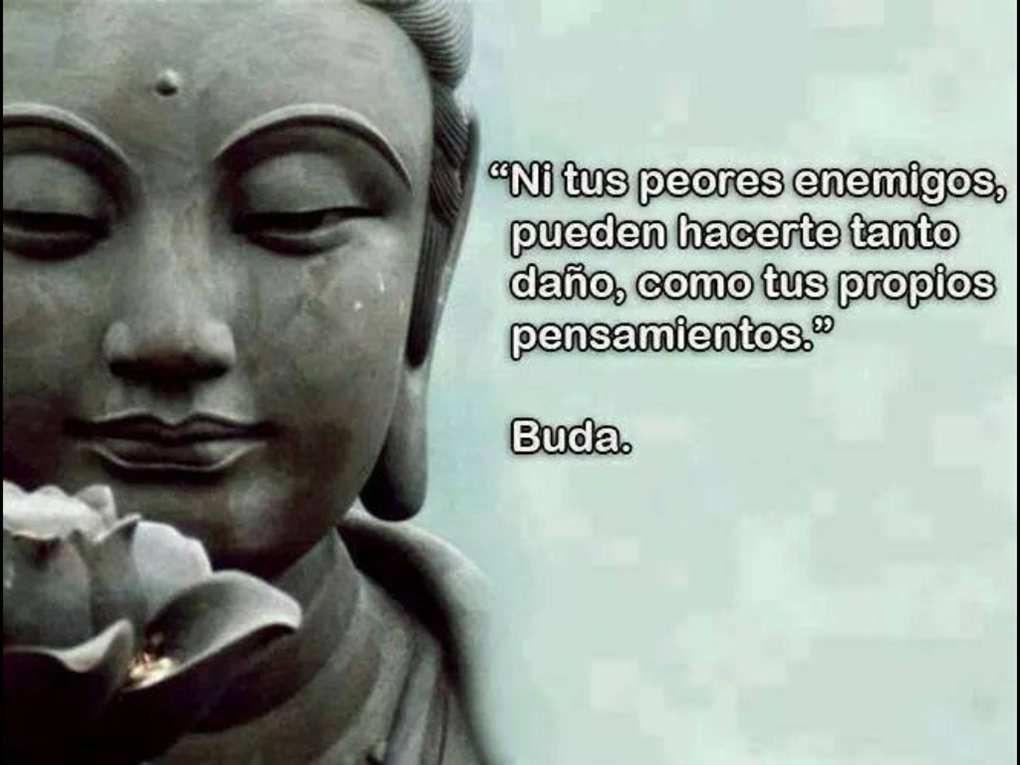 Mucha Sabiduría En Pocas Imágenes 13 Buda La Vache
