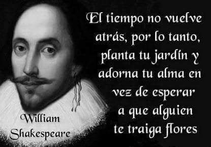 William Shakespeare 6 Frases En Imagenes La Vache Rose