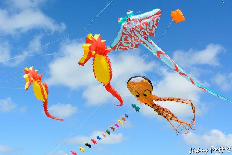 Festival des Cerfs Volants de Cayeux Sur Mer (6 et 7 juin 2015)