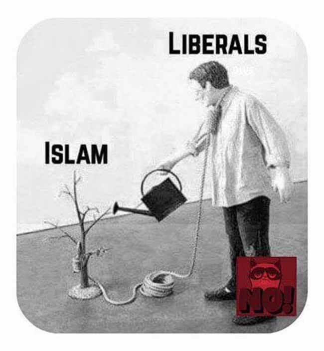L'ISLAM LE DESTRUCTEUR DES MONDES A POUR COMPLICE LES POUVOIRS POLITIQUES, C'EST MATHÉMATIQUES(fermaton.overblog.com)