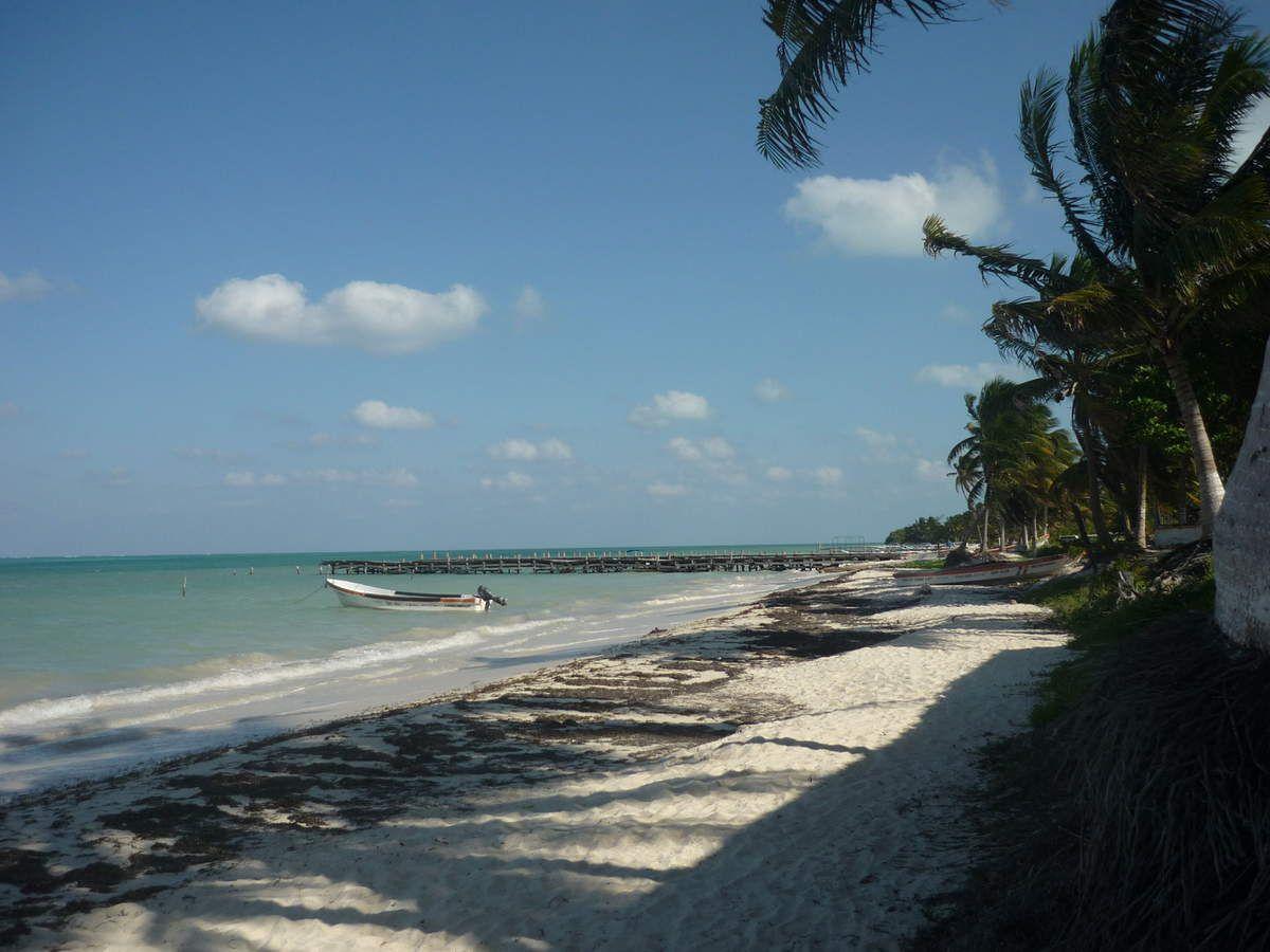 Punta Allen