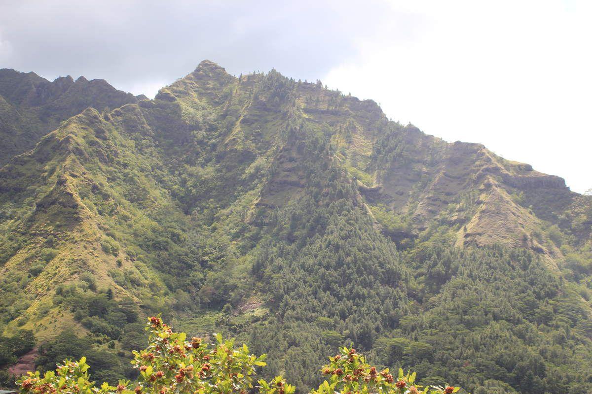 La Baie de Cook et La Montagne Magique - Moorea