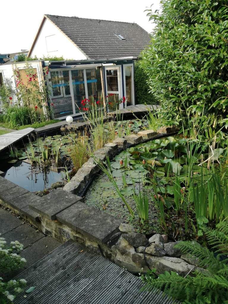 Le jardin de larissa une merveille voyage amerique du for Jardin 6 neuquen