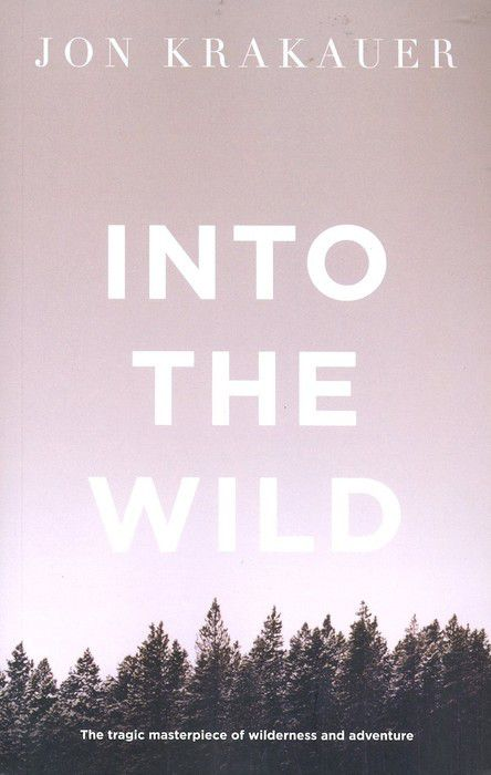 Source : http://googleimages.fr • Into the wild book cover