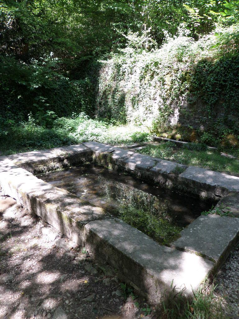 Dans la forêt, le lavoir (restauré) du 19ème siècle