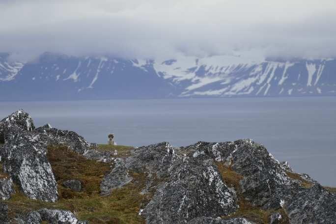 Galerie Svalbard #10