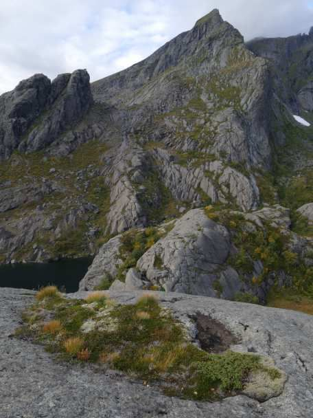 Galerie : Lofoten à Bergen