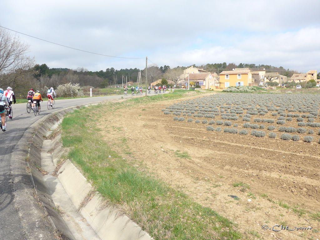 Dans la commune de Roussillon.