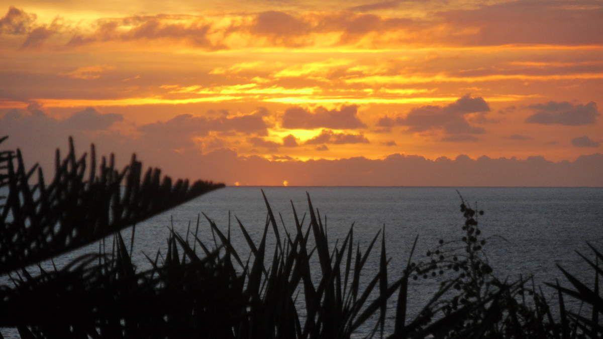 MADERE : L'hôtel &quot&#x3B;Pestana Bay&quot&#x3B; et la Praia Formosa