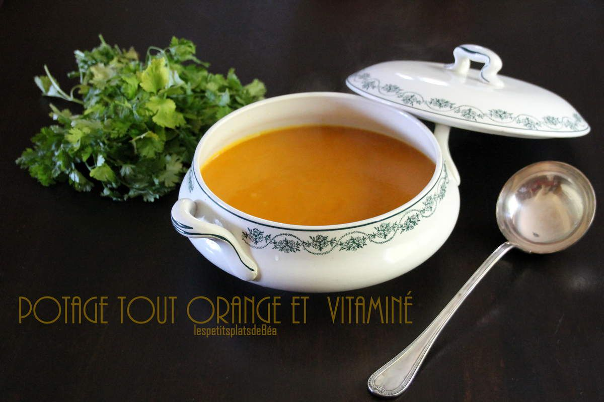 Potage tout  orange et vitaminé