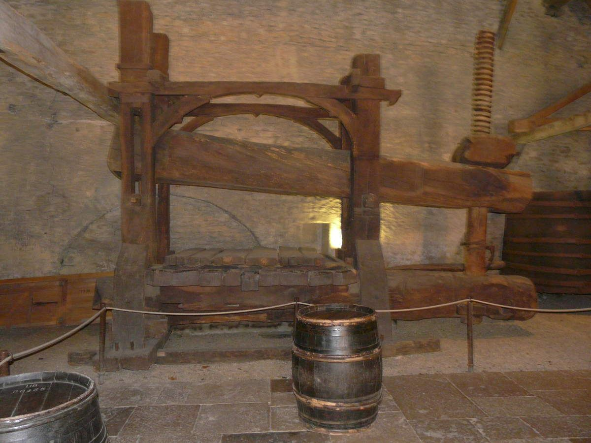 Oeufs en meurette - Balade bourguignonne