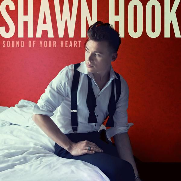 La nouvelle sensation pop s'appelle Shawn Hook !