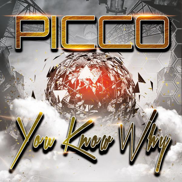 Picco met le feu avec You Know Why son nouvel hymne dancefloor !