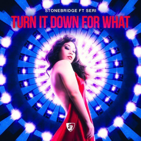 « Turn It Down For What » la nouvelle bombe House de Stonebridge !