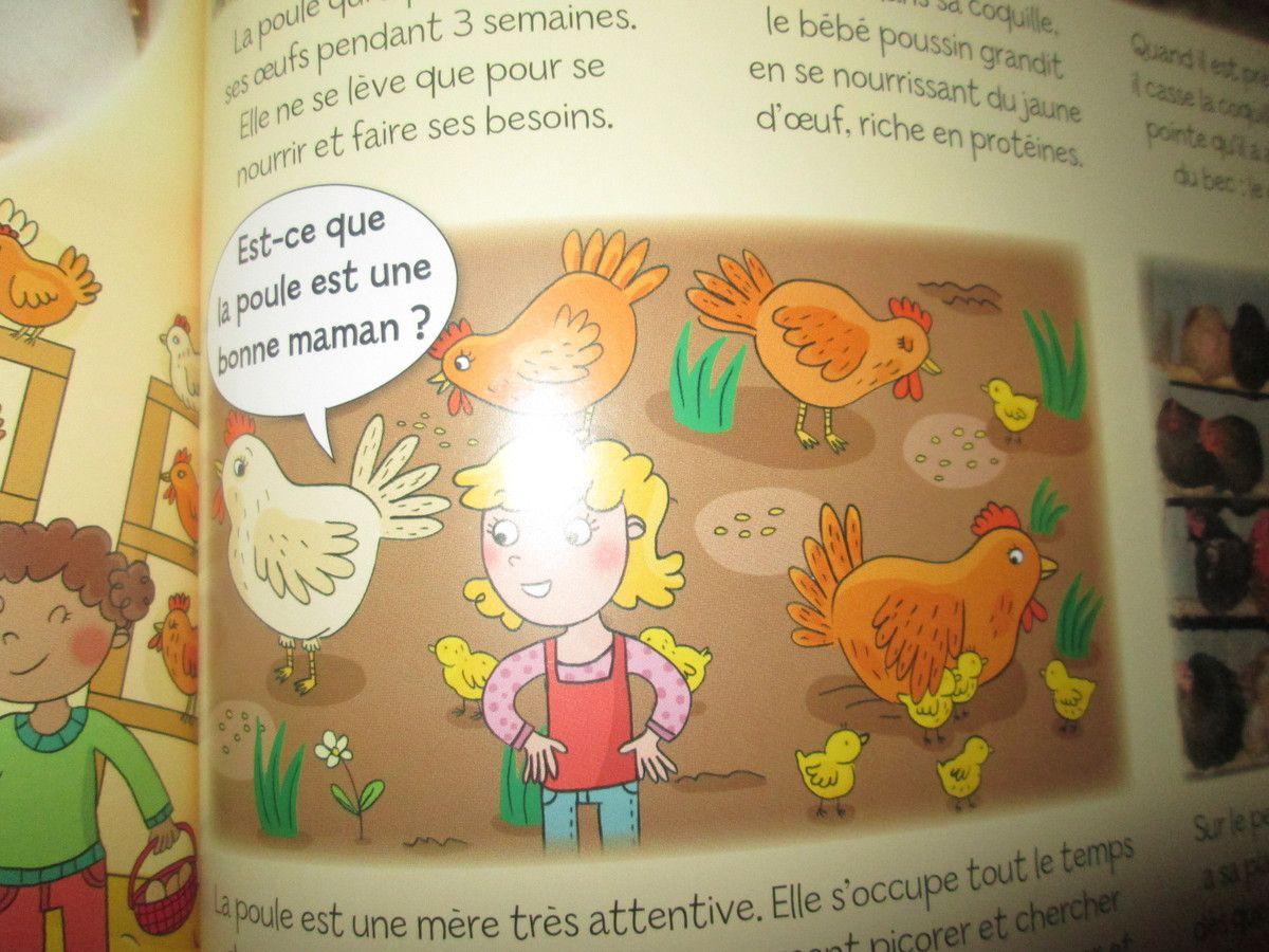 Voici quelques illustrations du livre