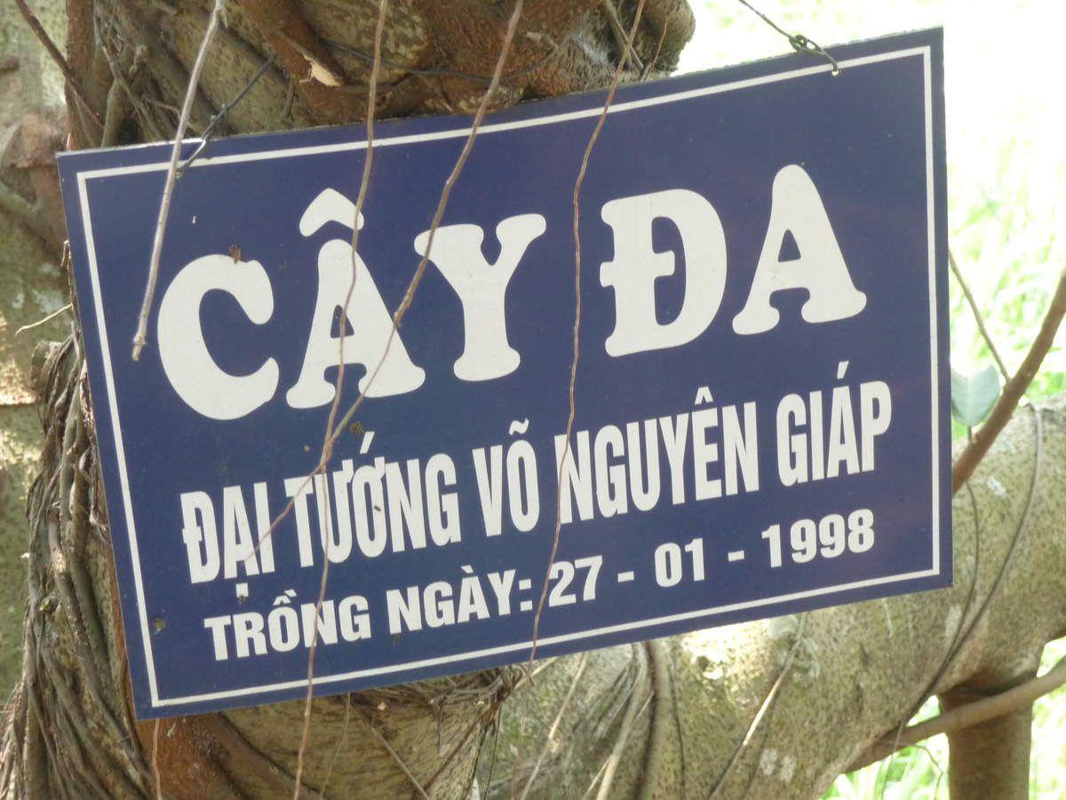 trinquette à  Mong Phu , l'aobre de GIAP , carpe sur un toit brulant , ancien poste de police , rue sechoir de paille de riz , élément de paravent .