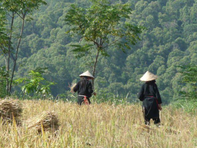 paysage , maison basse , Chine vue du col des portes du ciel , le gite , le voisin , Autel des ancêtres , moisson , les moissoneuses .