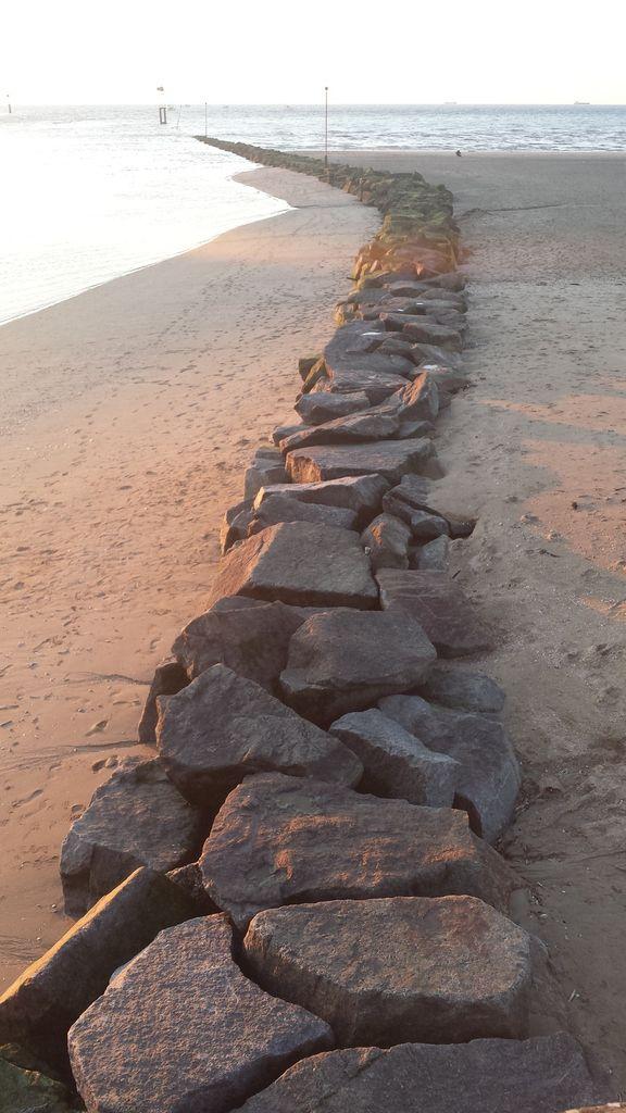 La plage et les planches