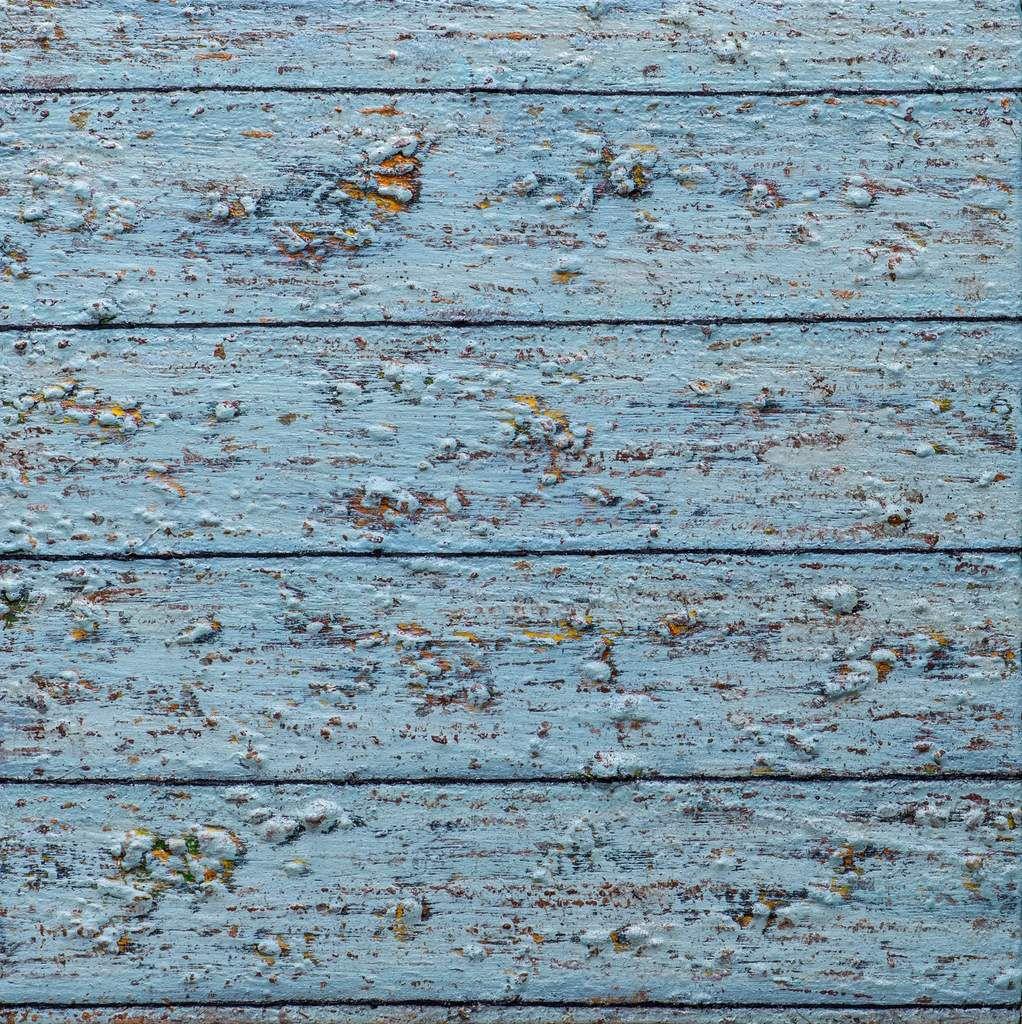 Palissades, 2015 huile, laque et bois sur toile 40 x 40 cm (14),