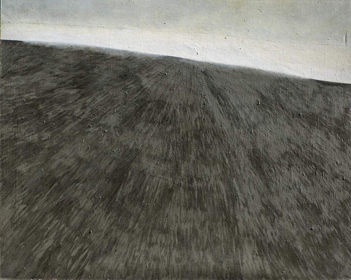 Sans titre, 2013 huile et laque sur toile 200 x 250 cm