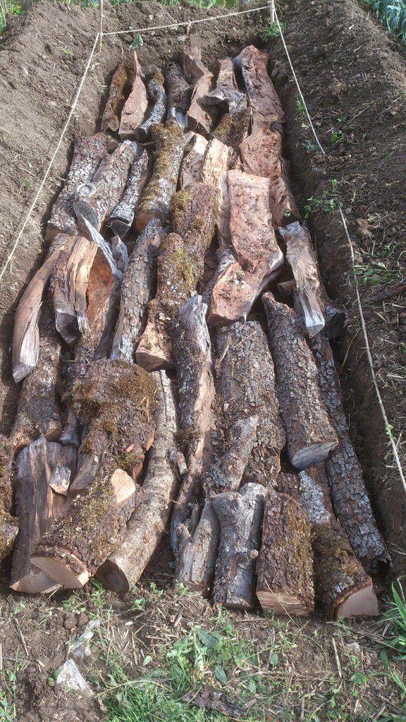 R alisation d 39 une butte en permaculture le blog de dakati for Permaculture terrasses et buttes