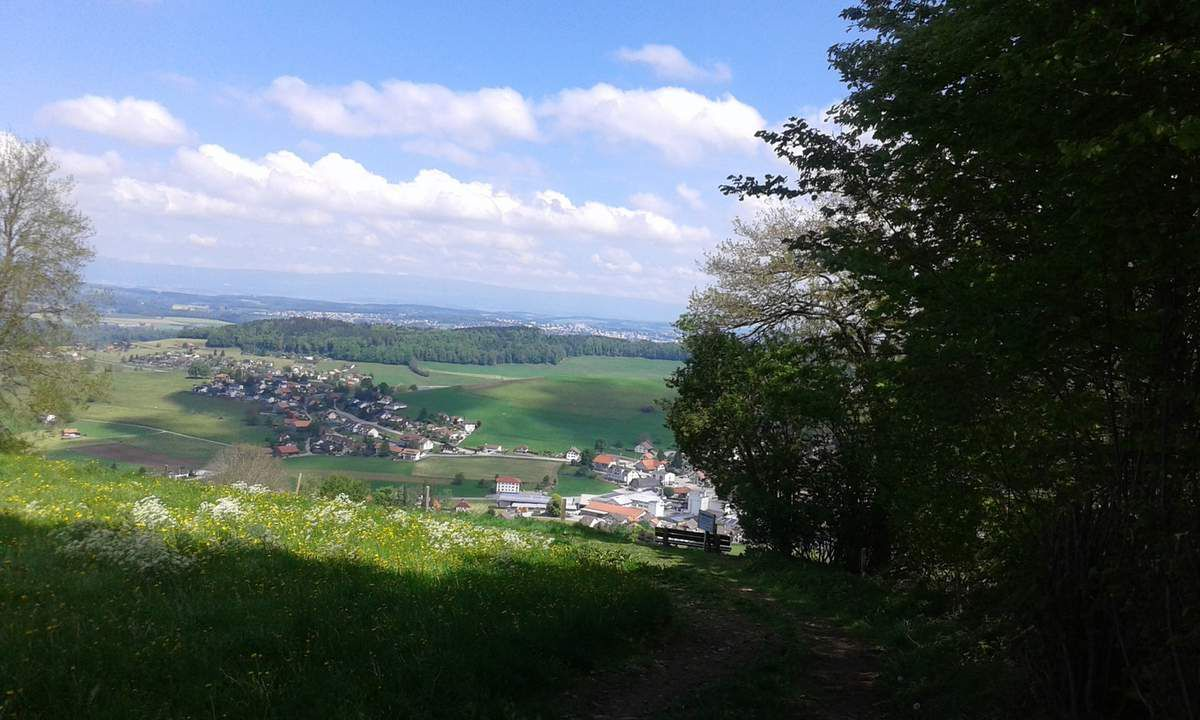 MONT COMBER 21.05.2017