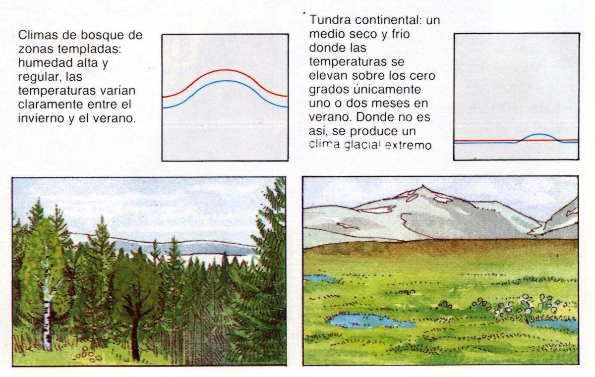 INFORMACIÓN. Tipos de Clima.
