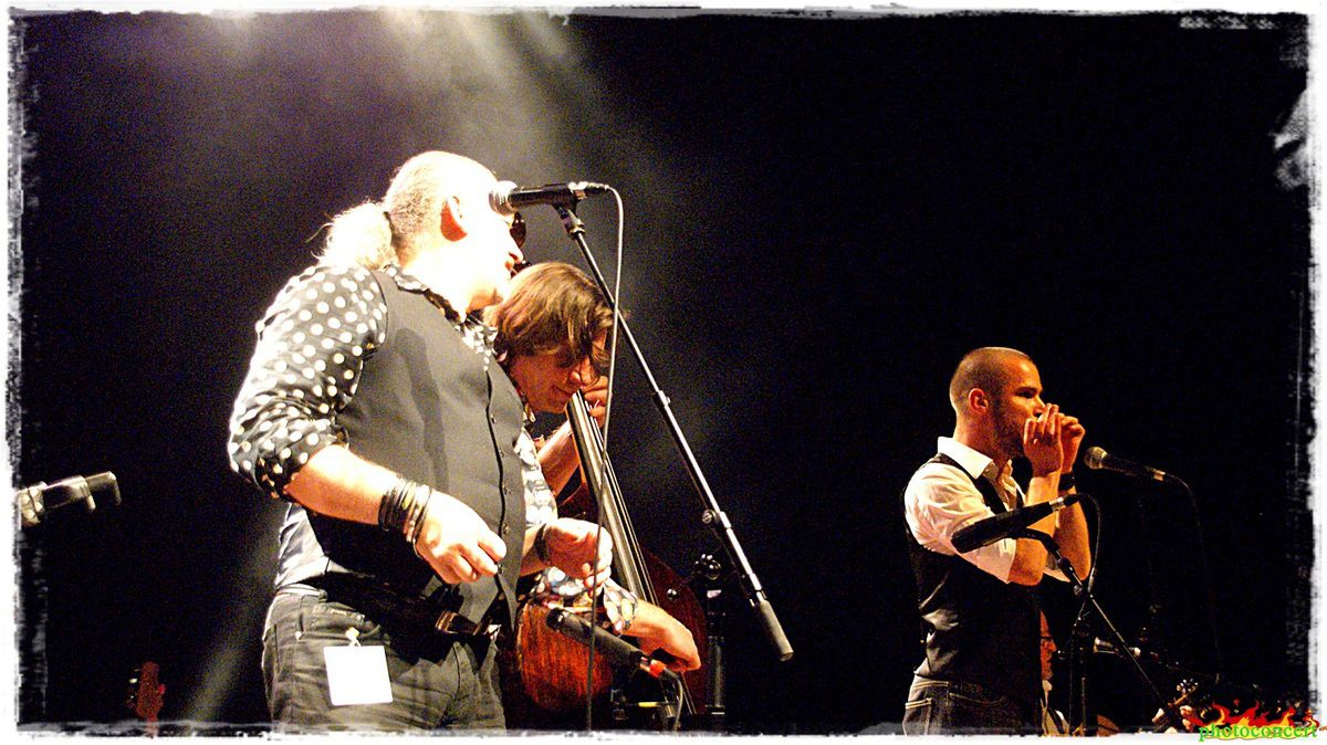 back to the roots en concert a lievin