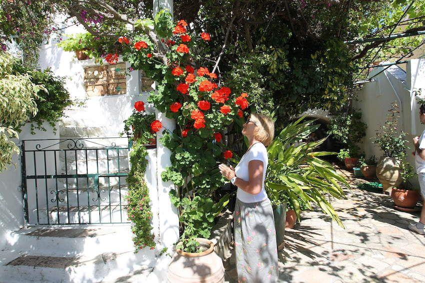 Lefkas et Corfu