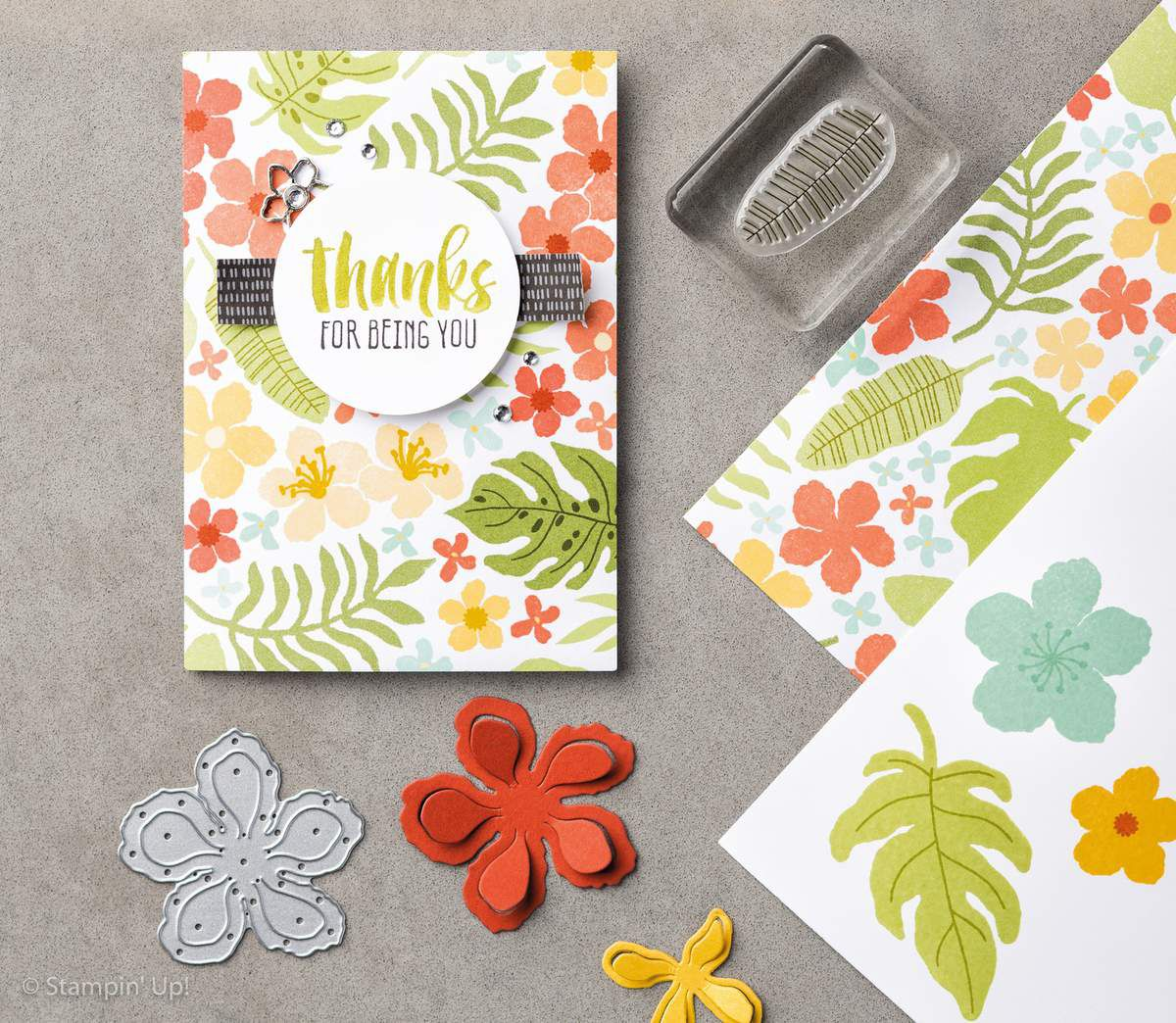 Set de tampons Stampin Up Botanical Bloom