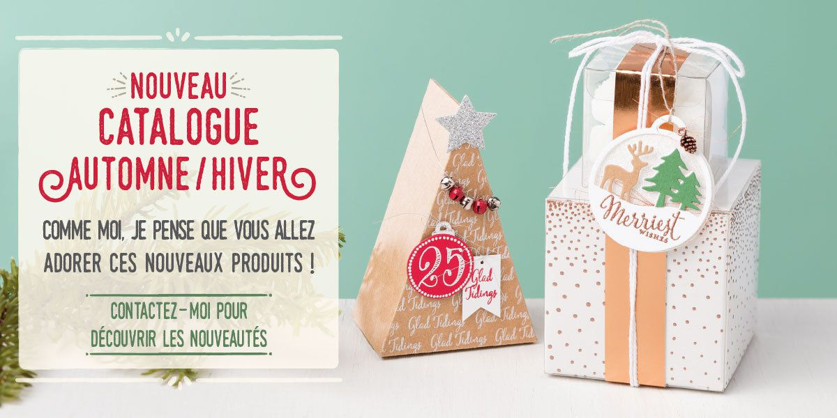 Decouverte du catalogue Stampin Up Hiver 2016