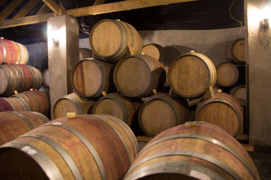 Dégustation de vin chilien