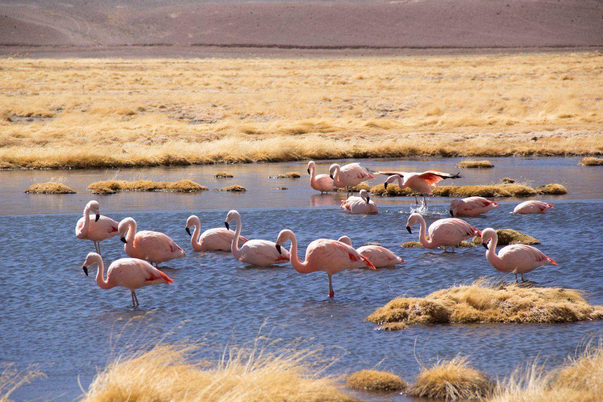 La laguna Santa Rosa et le refuge glacial