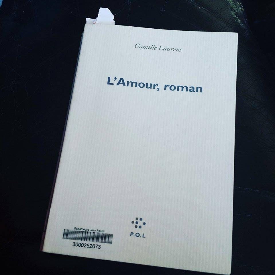 L'amour, roman de Camille LAURENS