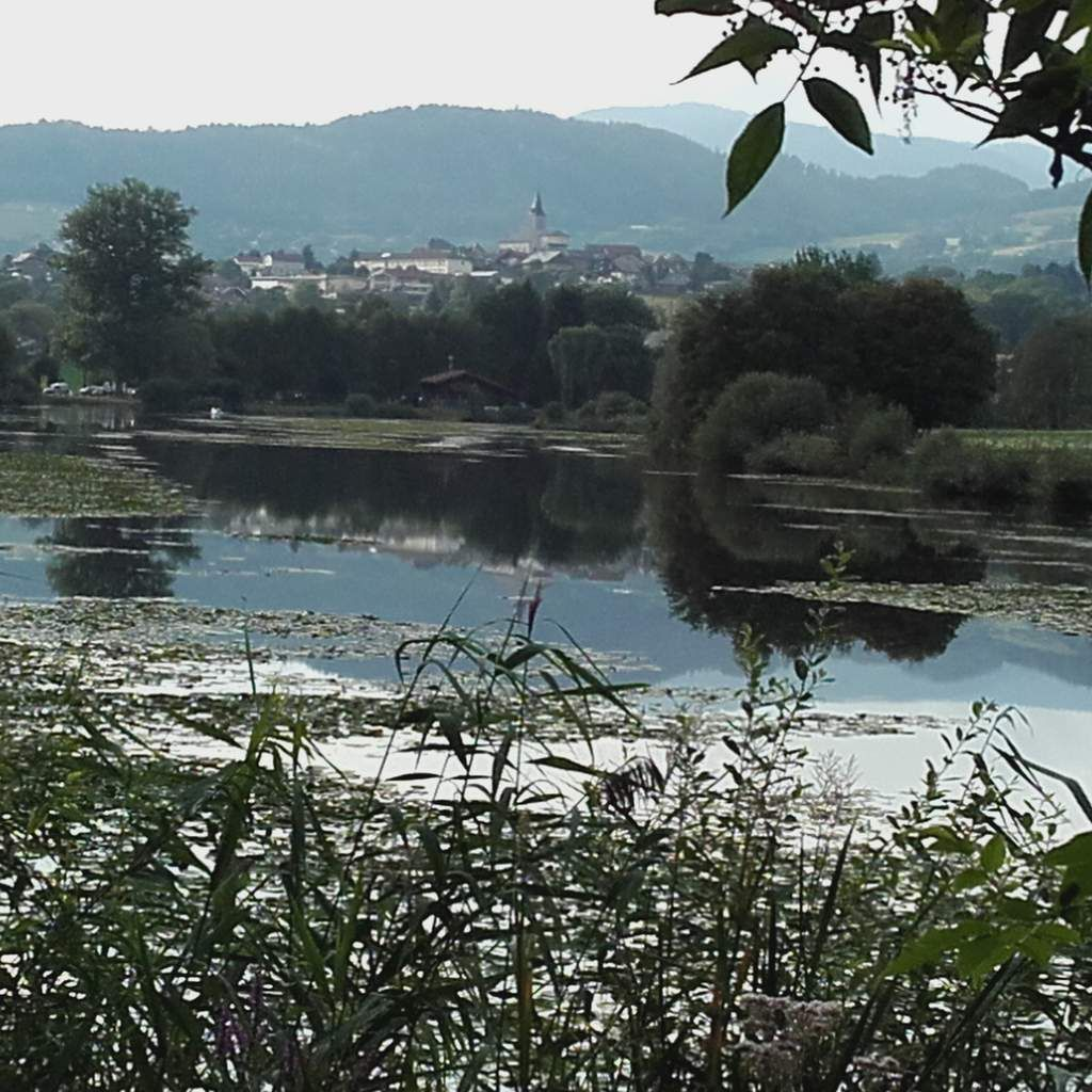 Vue sur Viuz en Sallaz