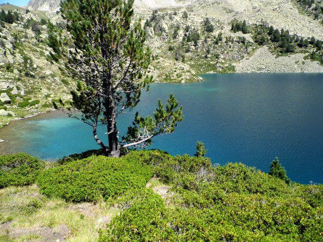Lac de Bastan,  Lac du milieu, le troupeau du berger , Lac supérieur